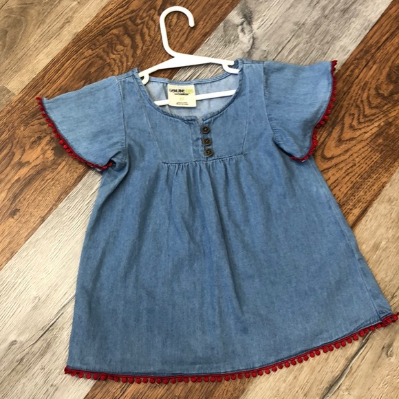 Blue 4t OshKosh Girls Embroidered Chambray Top